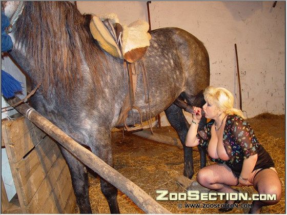 Интересные реальные zoo foto жирная блонда сосет лошадке зоо порно фото
