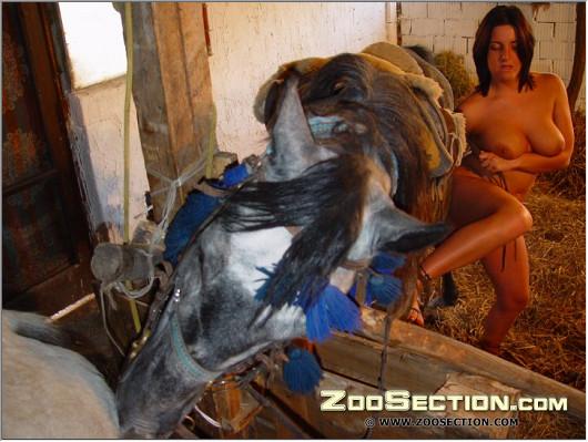 Рослая жена ублажает песика на зоо картинке