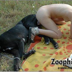 Классические порно фотки зоофилии с собакой на лужайке
