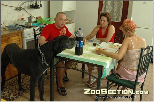Групповые зоо порно фото с собакой онлайн