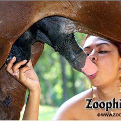 Порно фотки зоофилка щупает коня за хуек и яйца