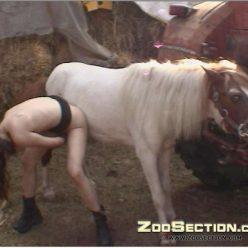 Картинки порно zoo ебля с пони зоо порно фото