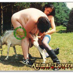 Брюнетки дрочат козе вибратором зоофото порно с животными