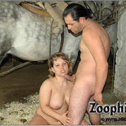 Horse zoo толстая жена сосет коню на зоо фото