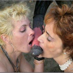 Порно зоо снимки старые бляди сосут лошадиный пенис