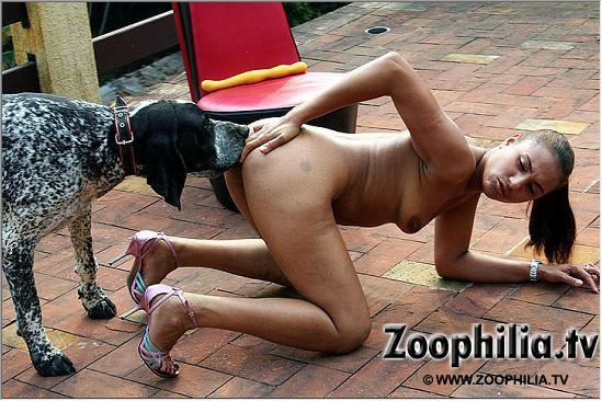 Зоопорно фото собака трахает в анус брюнетку