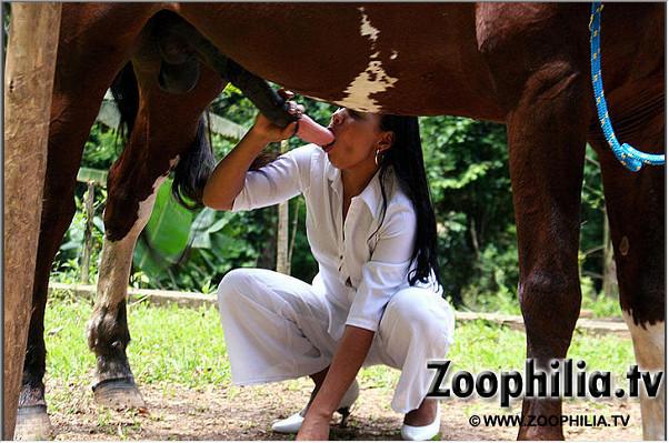 Фото зоо порно оральный секс с животным на травке